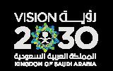 الرؤية 2030